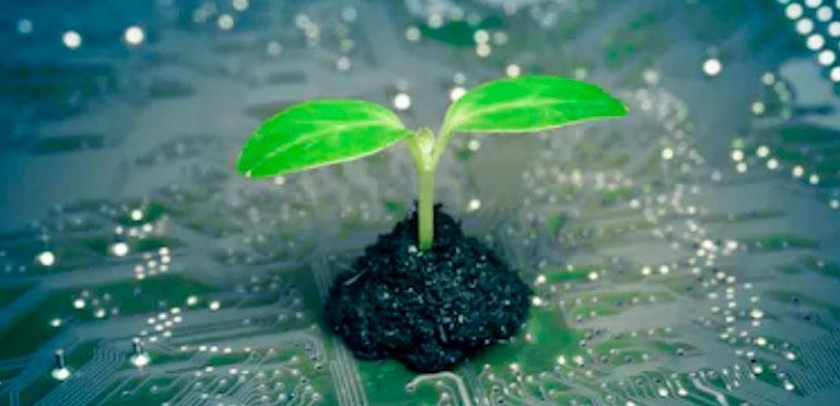 Foto de Tecnologia e meio ambiente: qual a ligação?